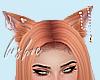 L ✫ Neko Ears
