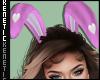K. Bunny Ears Lilac