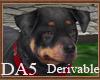 (A) Rottweiler Pet