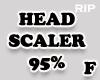R. Head scaler 95%