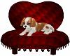 ATHY Dog Animated