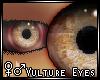 ♀♂Vulture Eyes