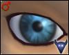 Blue philosopher eyes