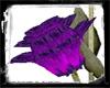 Andurs Purple Blossom