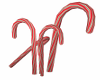 Candy Cane Forest Animat