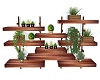 wall shelf w plants