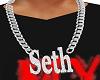 Seth necklace