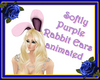 Softly Purple Rabbit Ear