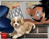 BN bbg's Puppy