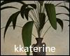 [kk] Loft Plant