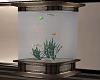 loft fish tank