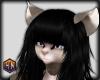 f gray kitty skin hexnut