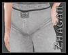 [Z] Hanfu pants silver