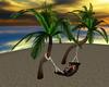 {B} Tropical Hammock