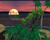 DJ's Island
