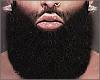 Veteran Beard