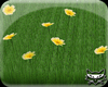 ! Grass path yellowwhite
