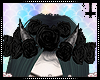 Aoi 01