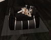 (S)Leopard Cub