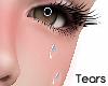 [Alu] Falling Tears