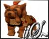iiS~ Coach Yorkie Puppy