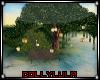 D* Spring Bay Lanterns
