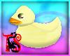 TS Rubber Ducky