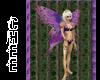 *Chee: Purple Fairy Wing