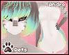 [Pets] Shel | fur v2