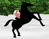 Blk Horse Accessory M/F