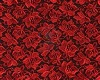 red rose master rob wedd