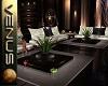 ~V~Lounge About Set 2