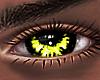 B! Burst Eyes x