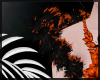 Hallows Black/Orange Boa
