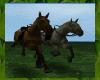 ! * Horseback Riding