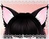 Neko Ears |Black
