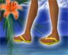 Flip Flops! Canary