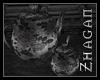 [Z] DH Teapot+Sugarpot