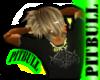 [PITBULL] Aduna Top