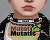 M. Custom [Kai]