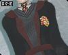 ⚡ Gryffindor . Robes