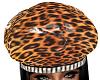Cat Scratch Hat