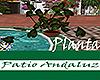 [M] Patio Andaluz Planta
