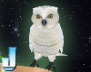 Earth Goddess Snowy Owl