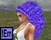 !Em Curly Purple Allegra