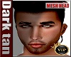 Mesh Head DARK*01
