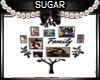 Sugar's Frames 2