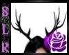 [SLR] Elk horns black