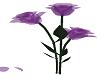 purple glass rose