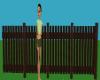 dark brown pickett fence